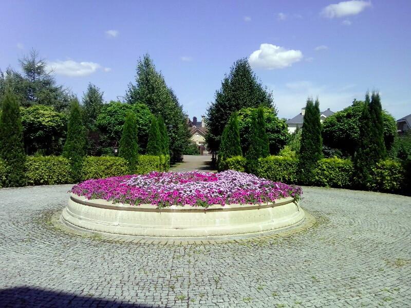 аллея липа крупнолистная голден глоб живая изгородь фонтан из цветов петуния брусчатка гранитная цветник веледниково