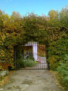 большой участок калитка живая изгородь боярышник можжевельник мощение ростовский плитняк веледниково осень