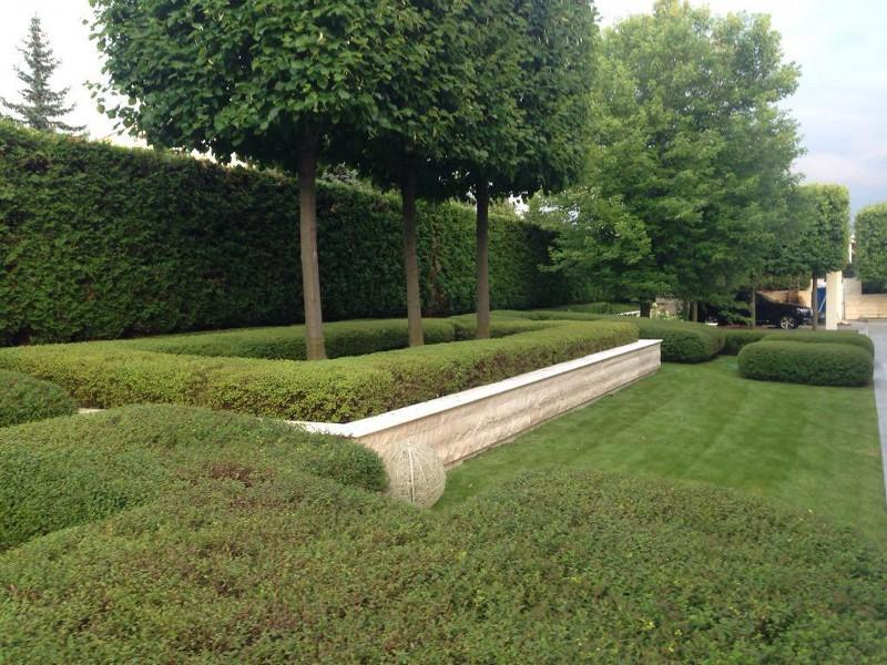 большой участок современный дизайн росинка туя живая изгородь липа куб спирея японская (2)