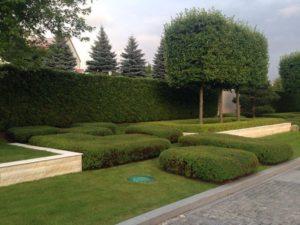 большой участок современный дизайн росинка туя живая изгородь липа куб спирея японская