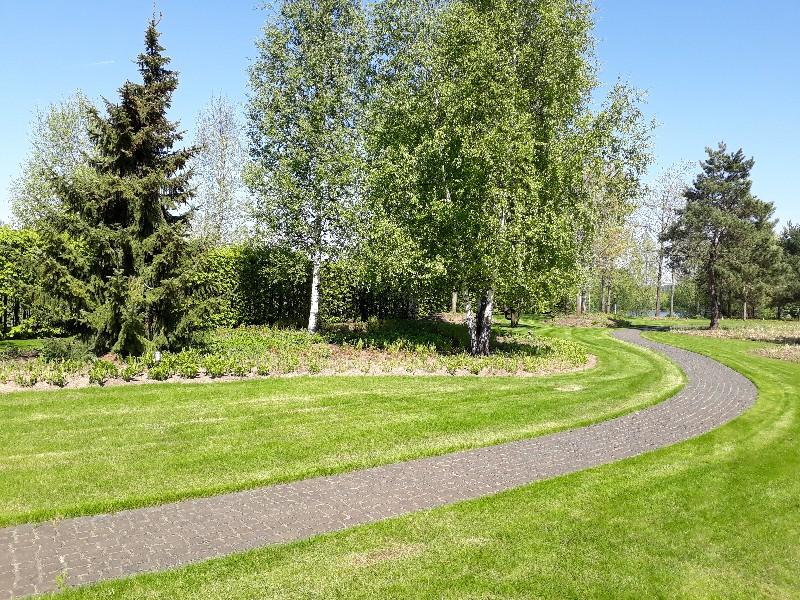 большой участок жуковка газон сосны дорожка из гранитной брусчатки ель обыкновенная береза цветники