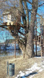 домик на дереве старая ива у реки домик над водой веледниково