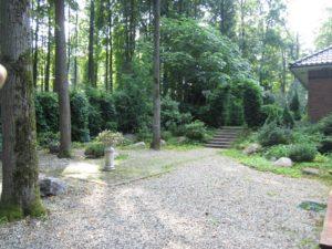 лесной средний участок гортензия липа арка из туи нагорье гравийная дорожка лестница орех серый
