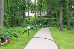 лесной участок липы газон деревянный дом садовые светильники нагорье пионы седум едкий хоста цветник в тени живая изгородь из туи