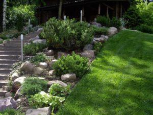 лесной участок на склоне лестница деревянные ступени из бруса баня сосна горная камни валуны светильник садовый новогорск 2 можжевельник газон