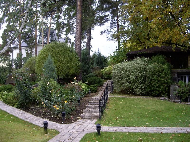 лесной участок на склоне лестница сосна горная камни валуны светильник садовый екатериновка ива можжевельник розы газон