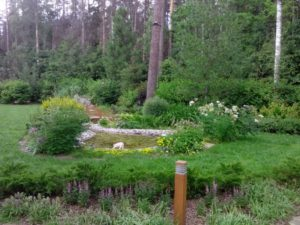лесной участок средний участок пруд деревянные светильники клуб 2071