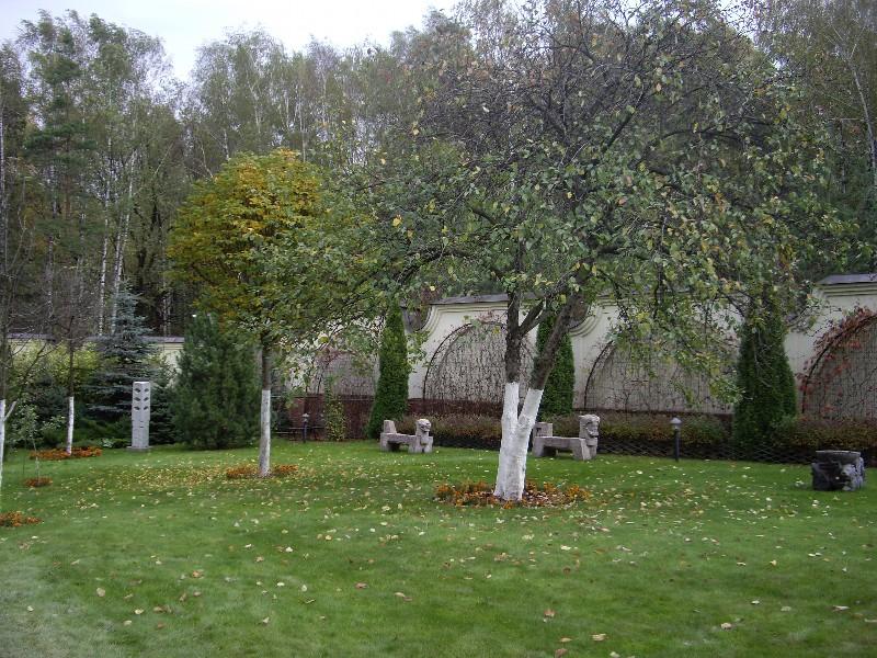лев гранитная садовая скульптура екатериновка осень газон каштан глобозум сосна кедровая можжевельник смарагдт туя западная осень газон старая яблоня