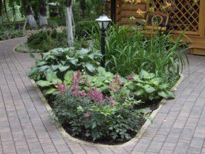 маленький лесной участок цветник загорянка дорожка бетонная плитка хоста астильба лилейник садовый светильник