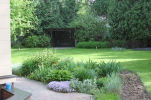 маленький участок екатериновка газон овсянница красная флокс шиловдный дерен туя западная лилейник ирис дорожка из коры