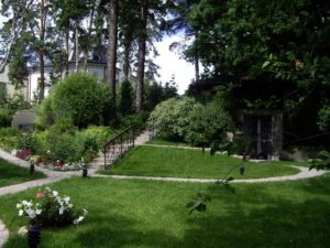 маленький участок екатериновка ива розы петуния спирея газон лестница лесной участок грот