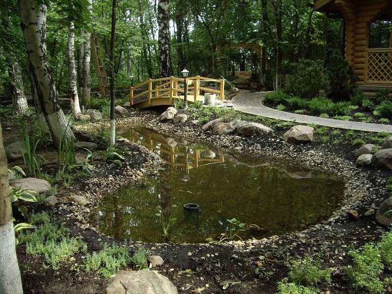 пруд мостик лесной участок загорянка скиммер дорожка из тротуарной плитки валуны