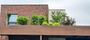 Сад на крыше ирга зонтик пузыреплодник озеленение кровли контейнерное озеленение