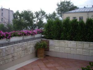 Сад на крыше озеленение кровли контейнерное озеленение астильба петуния туя западная брабант живая изгородь