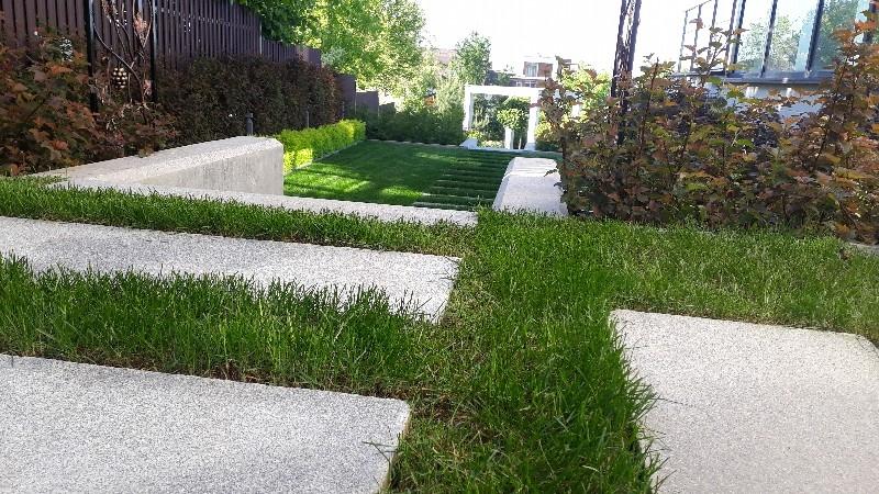 Современный дизайн средний участок пестово газон пошаговая дорожка из гранита ступени спирея японская голден принцесс пузыреплодник андреа маф подпорные стенки из бетона
