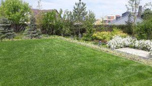 современный сад спирея серая клен сахаристый подпорные стенки из бетона садовые светильники багрянник японский пестово