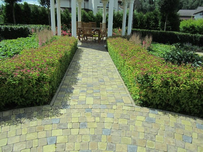 спирея японская цветная тротуарная плитка ротонда беседка стриженая живая изгородь