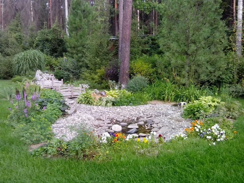 средний лесной участок клуб 2071 пруд мискантус лиатрис хоста лилейник ива пуртурная ель обыкновенная водоем галька молочай сосна кедровая