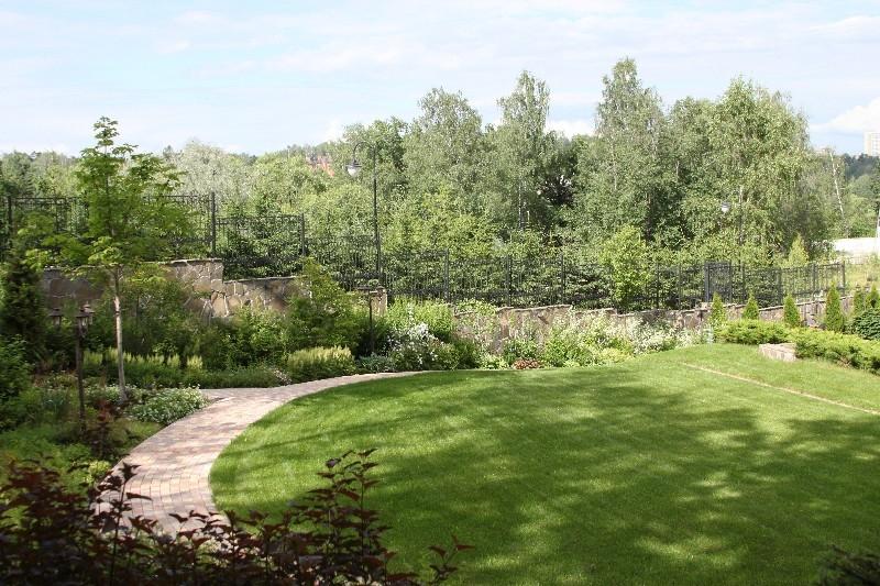 средний лесной участок новогорск каштан конский газон астильба спирея белая чубушник березовая роща можжевельник минт джулеп