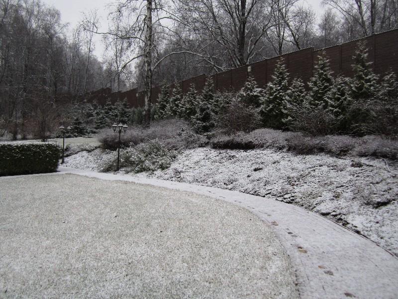 Средний участок лесной участок новогорск 2 живая изгородь из туи плитка протуарная газон зима