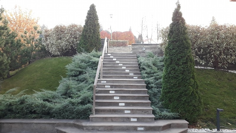 средний участок лестница росинка можжевельник хетци туя смарагдт светильники садовые