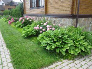 средний участок нахабино кантри пин хоста лилейник седум тротуарная плитка газон деревянный дом