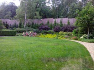 Средний участок новогорск 2 живая изгородь из туи плитка тротуарная газон склон пузыреплодник диабло гортензия лапчатка седум едкий розы