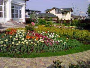средний участок пестово цветник весна тюльпан герань спирея яблоня очиток едкий тротуарная плитка