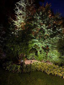 ландшафтное освещение ночью